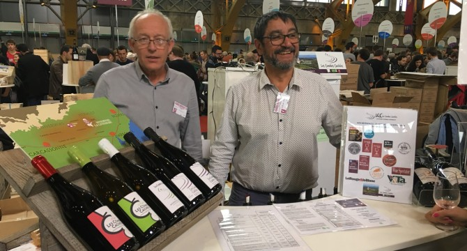Autumn wine fairs: very good return